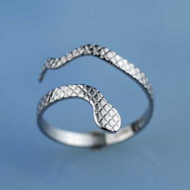 Adjustable snake ring in stainless steel